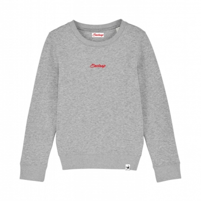 Grijze Snotaap sweater
